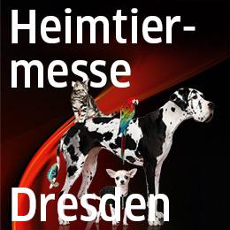Messelogo-Internet-260x260px